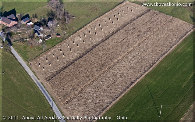 Aerial view of three stages of a corn harvest on an Amish farm - ready for harvest, cut, and bundled.