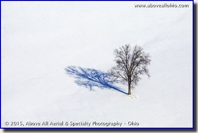 A winter view of a single tree in a snowy field somewhere in northeastern Ohio.